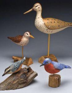 triplett birds